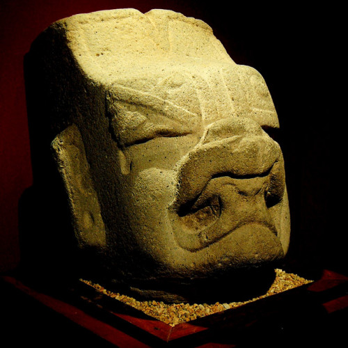 A statue head of the Olmec Were-Jaguar