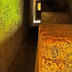 One of the chambers within the Bat Palace at Tikal