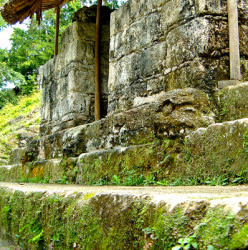 The Skulls from Structure 5D-87 at Tikal