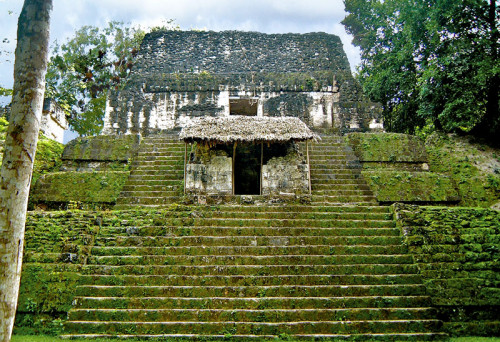 The Temple of Skulls, Structure 5D-87, at Tikal