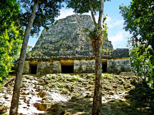 Temple of Inscriptions (Templo VI), at Tikal