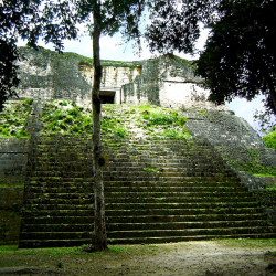 A temple from Group H, Tikal