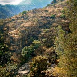 Cerro de los Idolos at Malinalco