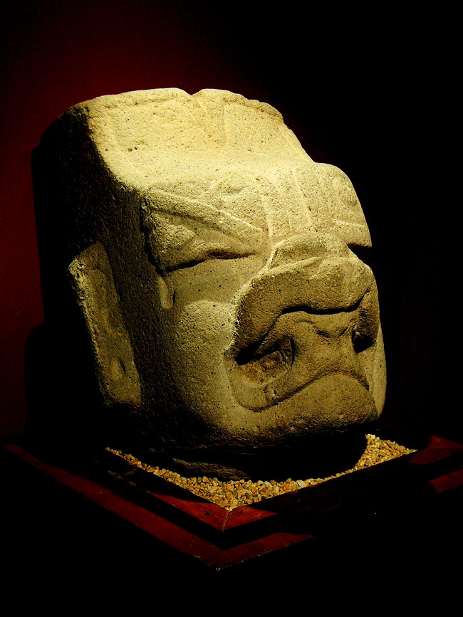 the olmec the children of the werejaguar uncovered history