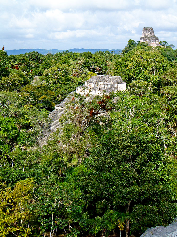 On top of Great Pyramid at Tikal, looking North West to Temple IV