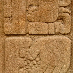 Glyphs from the front of Stela C at Quirigua