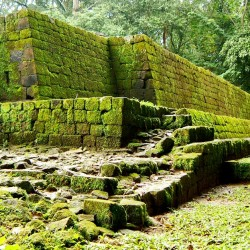 Rear South Corner of Acropolis at Quirigua