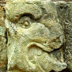 Animal Glyph on the Temple of Inscriptions at Copan