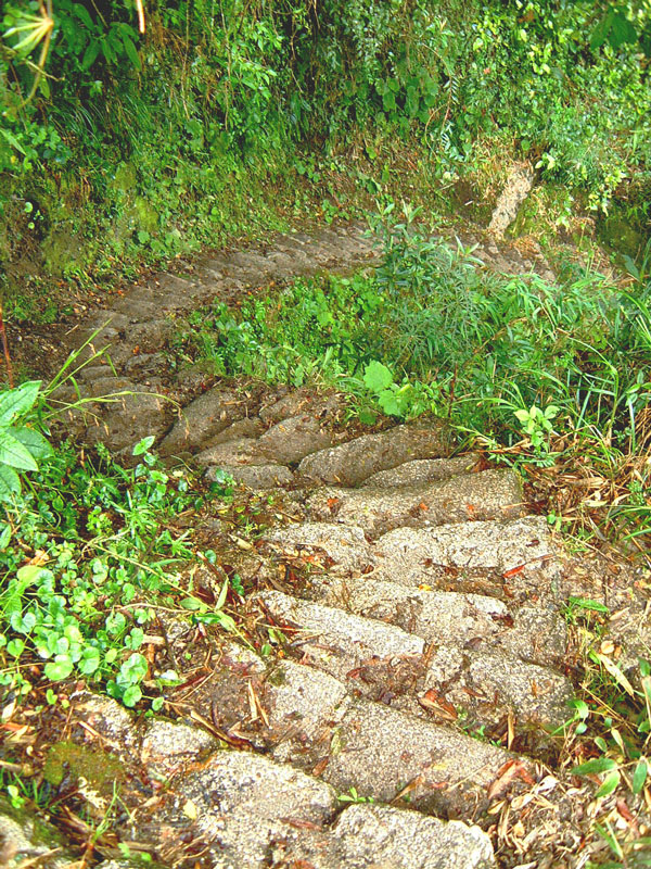 Stairway on the Inca Trail
