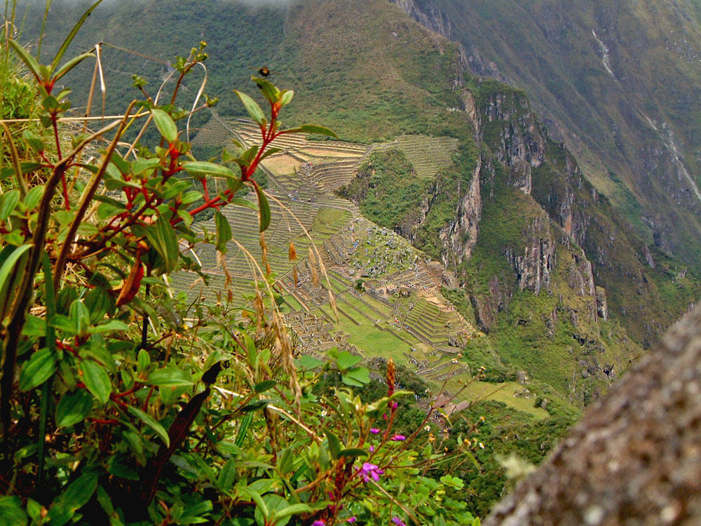 View from Huayna Picchu at Machu Picchu